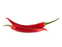 Red chili hot peppers on white background. Royalty Free Stock Photography