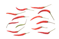 Red chili isolated on white background Royalty Free Stock Photos