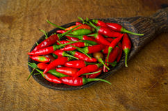 Red chili in ladle Stock Image
