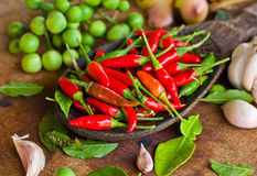 Red chili and many spices Royalty Free Stock Photo