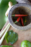 Red chili in mortar Royalty Free Stock Image