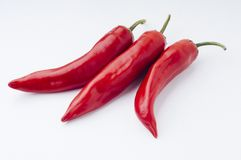 Red chili. Natural, fresh and spicy red chili royalty free stock photography