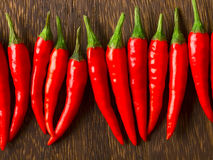 Red chili padi Stock Images