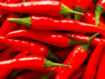 Red chili padi. Close up of red chili padi food background Royalty Free Stock Photography