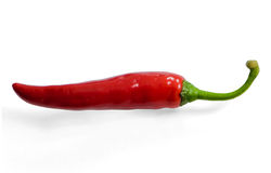 Red chili pepper Stock Images
