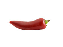 Red Chili Pepper. Photo of a red chili pepper isolated on white Stock Photography
