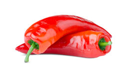 Red chili pepper. On white background Stock Image