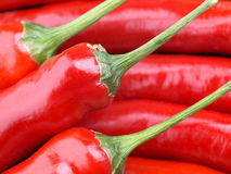 Free Red Chili Pepper Royalty Free Stock Photos - 3324938