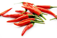 Red chili pepper Royalty Free Stock Images