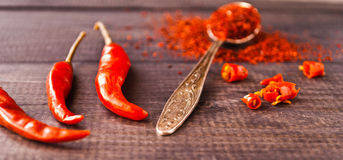 Red Chili Pepper Royalty Free Stock Photo