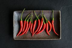 Red chili pepper on black background Royalty Free Stock Photography