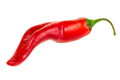 Red chili pepper close-up Royalty Free Stock Images