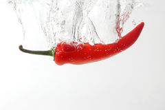 Red chili pepper falling in water