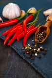 Red chili pepper, garlic and hot peppercorns Stock Photography