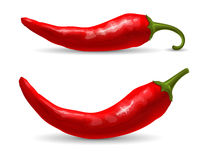 Red chili pepper. Red hot chili pepper, fresh ingredient for tasty spicy food. Vector illustration.  on white background Royalty Free Stock Photography