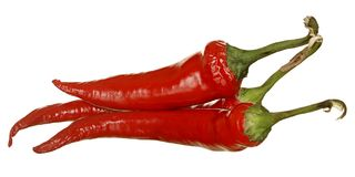 Red chili pepper isolate on white background. Stock Photo