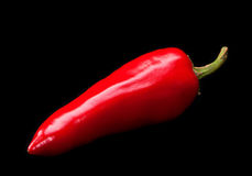 Red chili pepper. Isolated on black Stock Photos