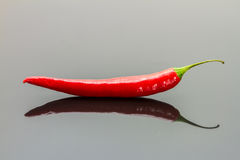 Red chili pepper isolated on a black background. Royalty Free Stock Image