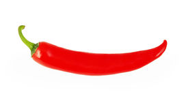 Red chili pepper isolated on white. Background with clipping path Stock Photos