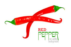 Red chili pepper isolated on a white Stock Images