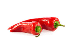 Red chili pepper isolated on white background vegetable food Royalty Free Stock Photography