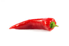 Red chili pepper isolated on white vegetables Royalty Free Stock Images