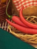 red chili pepper - organic vegetables and healthy eating styled concept royalty free stock photography