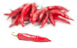 Red chili pepper with peppers in the background. Red chili pepper with a bunch of peppers in the background, isolated on white Stock Photos