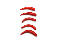 Red chili pepper in a row Stock Photo