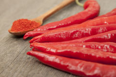 Red chili pepper. And spoon with pepper Royalty Free Stock Photo