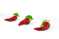 Red chili pepper with water drops. Three hot chili pepper with water drops on a white background Stock Photography