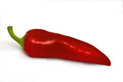 Red Chili pepper on white Royalty Free Stock Photography