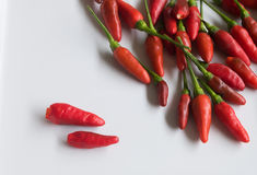 Red chili pepper on white plate Stock Photo