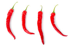 Red chili peppers. Isolated on white background Royalty Free Stock Image