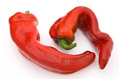 Red chili peppers. Two red chili peppers, isolated on a white background Royalty Free Stock Photography