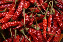 Red chili peppers. Hot,Hot, Hot red chili peppers Royalty Free Stock Image