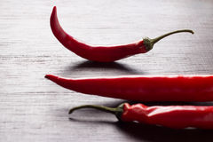 Red chili peppers  Back light Royalty Free Stock Photos