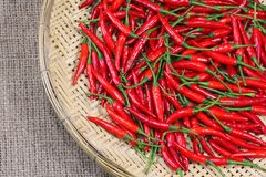 Red chili peppers on bamboo weave Stock Images