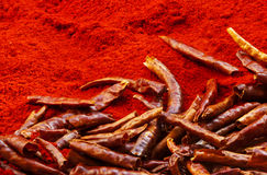 Red chili peppers and chili powder Stock Image