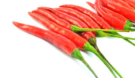 Red chili peppers. Red chilli peppers isolated on white Royalty Free Stock Images