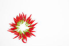 Red Chili peppers in a circle Royalty Free Stock Photography
