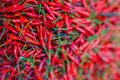 Red chili peppers, closeup view Royalty Free Stock Photography
