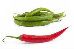 Red chili peppers and green. Red chili peppers on green chili peppers background on white Stock Photo