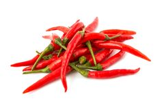 Red chili peppers. Group of red chilies on white background. Close-Up, Selective focus Stock Photography