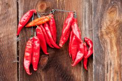 Red Chili Peppers hanging Royalty Free Stock Photography