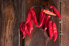 Red Chili Peppers hanging Royalty Free Stock Photo