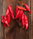 Red Chili Peppers hanging Stock Images