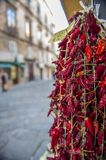 Dried red chili peppers hanging for sale at the  street Market, Tropea, Italy. Red chili peppers hanging, ready for sale Stock Photos