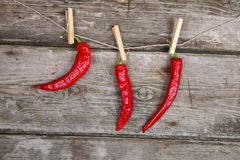 Red chili peppers hanging on a rope Stock Photos