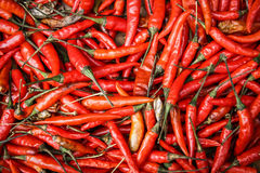 Red chili peppers. Stock Photos